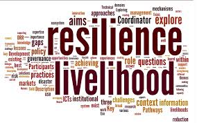 resilience word